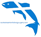 logo for the scottish salmon fishing surgery: it is a fish with a scottish flag pattern